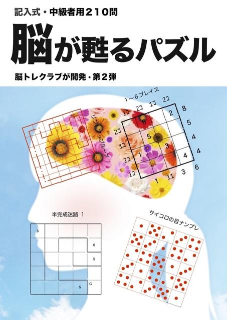 hyoshi2..1jpeg.jpg